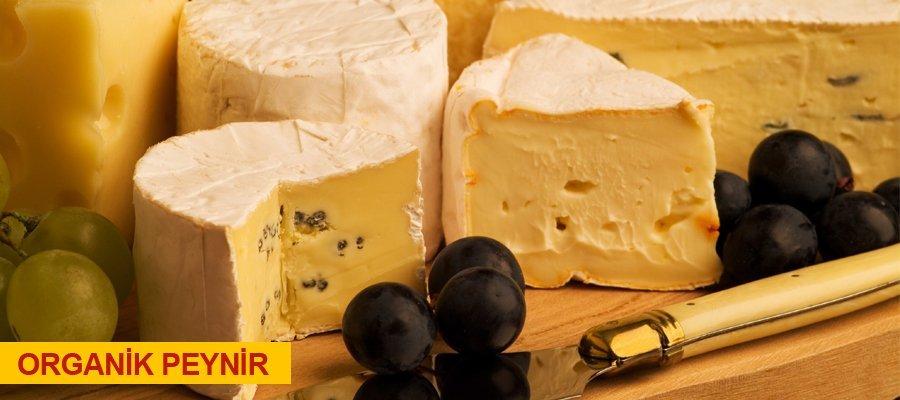 Peynir 0553 261 60 67