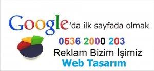 Zile Web Tasarımı Yapılır 0536 2000 203 İnternet Reklamı Tanıtımı Sayfası Seo Çalışması Top